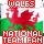 Wales National Team Fan